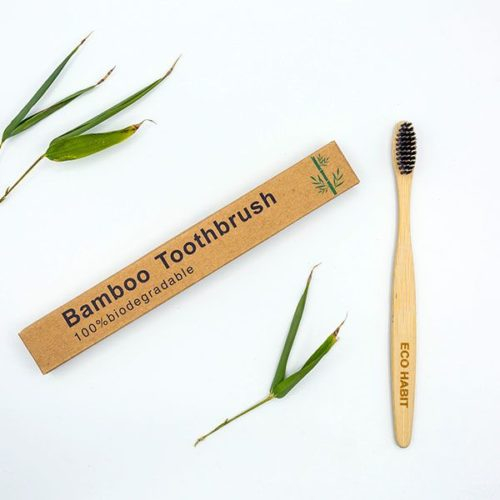 Toothbrush (Adult)